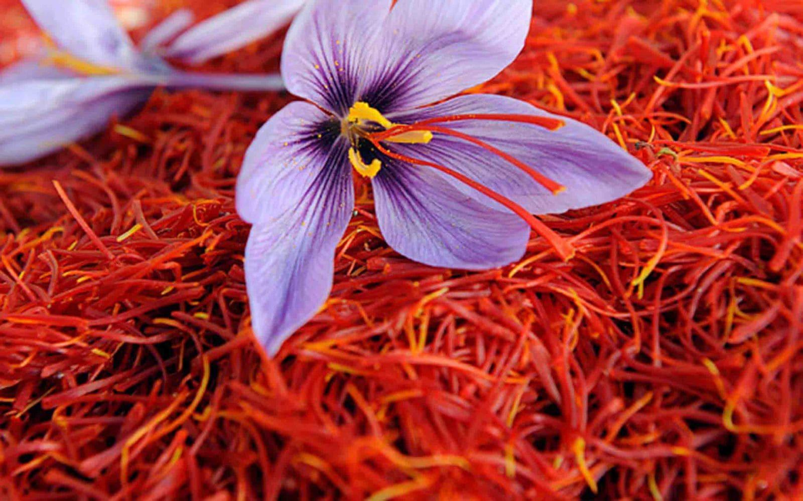 ملخص مباراة الاهلى والزمالك بالدوري المصرى